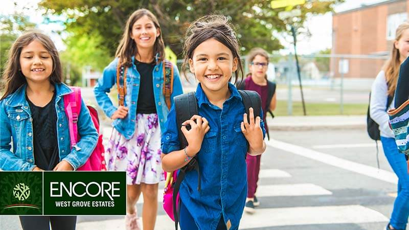 Schools Near Homes In Calgary's West Groves Estates